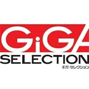 【直送品】 ギガ・セレクション パーツボックス用ボード HP06-8-630