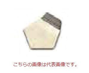 【直送品】 オーハウス (OHAUS) F2級 OIML標準分銅 91400164 (JCSS校正証明書付)
