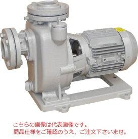 【直送品】 寺田ポンプ 陸上ポンプ(鋳鉄製) MPJ4-63.71E (三相200V 60Hz)