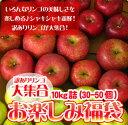 りんご 訳あり 10kg 送料無料 リンゴ 北海道 青森 リンゴ ※沖縄は送料別途加算 ポイント消化 ゴルフコンペ 敬老の日 秋分の日