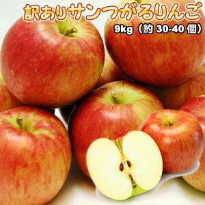 訳あり サンつがるりんご 10kg 送料無料 ※沖縄は送料別途加算
