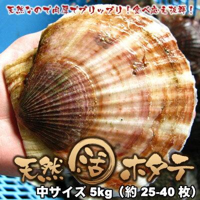 活ホタテ 北海道 天然ほたて 中サイズ 5kg 送料無料 ※沖縄は送料別途加算