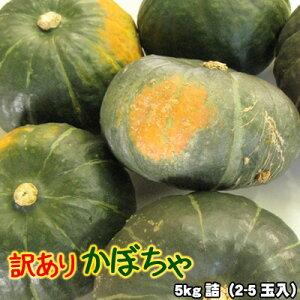 かぼちゃ 訳あり 北海道 5kg詰(2-5玉入)送料無料※沖縄は送料別途加算