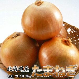 たまねぎ 送料無料 5kg 玉ねぎ 玉葱 タマネギ 北海道産 L-2Lサイズ ※沖縄送料別途加算