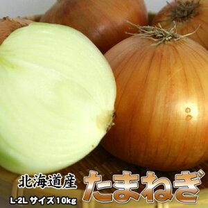 たまねぎ 送料無料 10kg 玉ねぎ 玉葱 タマネギ 北海道産 L-2Lサイズ ※沖縄送料別途加算