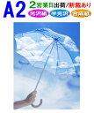 【A2】ポスター印刷2営業日目出荷【化粧断裁する】税別8,000円以上で送料無料