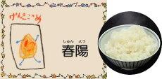 Dr.ミールオリジナル低たんぱく・無洗米「春陽米/しゅんようまい」5kg