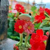 【新作】コポーガーベラを持つカエルcopeauコポーシリーズコポタロウコポたんかえるカエル雑貨置き物オブジェフィギュア置物小物ガーデンミニチュアDRAWERPLUSドロワープラスどろわーぷらすダイカイ桜春【72216】