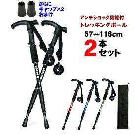 登山 ステッキ 2本セット どこにでも使える トレッキングステッキ つえ 旅行先にも持っていけます キャリーバッグ付属