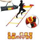 トレーニングラダー 3m トレーニング用品 野球 陸上 ラグビー アジリティー サッカー フットサル 練習器具 部活
