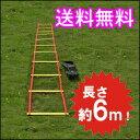 トレーニングラダー 6m トレーニング用品 野球 陸上 ラグビー アジリティー サッカー フットサル 練習器具 部活 02P03…