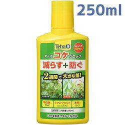 テトラコケブロック250ml【緑ゴケ・藍藻・コケ防止】