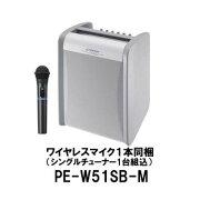 JVCKENWOOD/ケンウッド/PE-W51SB-M/ポータブルワイヤレスアンプ/800MHz帯ワイヤレス対応