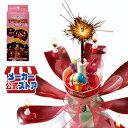 【1個 ドリームキャンドル デラックス お誕生日用】2個以上 送料無料 誕生日 プレゼント バースデーキャンドル ロウソ…
