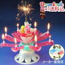 【数量限定・送料込】 ドリームキャンドル デラックス 誕生日 サプライズ バースデーキャンドル ドリームキャンドルデ…