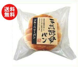 送料無料 【2ケースセット】天然酵母パン ブルーベリーパン 12個入×(2ケース) ※北海道・沖縄・離島は別途送料が必要。