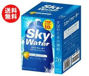 【送料無料】【2箱】クラシエ スカイウォーター グレープフルーツ味 1L用 (20g×2×5袋)×2箱入 ※北海道・沖縄・離島は別途送料が必要。
