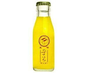 送料無料 友桝飲料 カステラサイダー 95ml瓶×2本×24箱入 ※北海道・沖縄・離島は別途送料が必要。