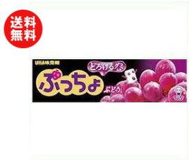 【送料無料】【2ケースセット】UHA味覚糖 ぷっちょスティック ぶどう 10粒×10個入×(2ケース) ※北海道・沖縄・離島は別途送料が必要。