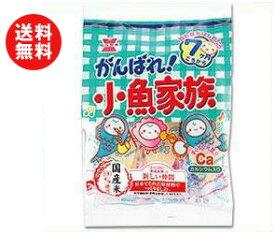 【送料無料】岩塚製菓 がんばれ!小魚家族 47g×6袋入 ※北海道・沖縄・離島は別途送料が必要。