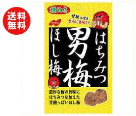 【送料無料】【2ケースセット】ノーベル製菓 はちみつ男梅ほし梅 20g×6袋入×(2ケース) ※北海道・沖縄・離島は別途送料が必要。