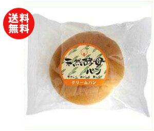 送料無料 天然酵母パン クリームパン 12個入 ※北海道・沖縄・離島は別途送料が必要。