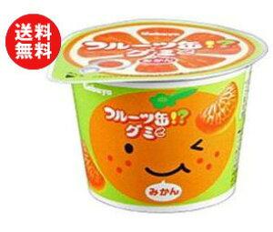 送料無料 カバヤ フルーツ缶グミ 50g×12個入 ※北海道・沖縄・離島は別途送料が必要。