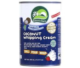 送料無料 【2ケースセット】ユウキ食品  ココナッツホイッピングクリーム 405g缶×12個入×(2ケース) ※北海道・沖縄・離島は別途送料が必要。