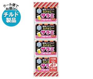送料無料 【2ケースセット】【チルド(冷蔵)商品】雪印メグミルク スパイシーサラミ ベビーチーズ 48g(4個)×15個入×(2ケース) ※北海道・沖縄・離島は別途送料が必要。