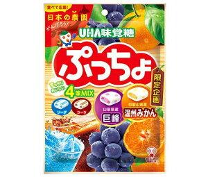 送料無料 UHA味覚糖 ぷっちょ袋 4種アソート 93g×6袋入 北海道・沖縄・離島は別途送料が必要。