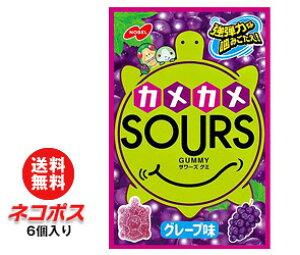 【全国送料無料】【ネコポス】ノーベル製菓 サワーズ(SOURS) グレープ味 45g×6個入
