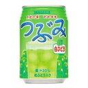 【あす楽】サンガリア つぶみ 白ブドウ 280g 1ケース24本×2ケース 02P03Dec16