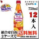 CALPIS 「Welch's」ウェルチ フルーツスムージー さわやかアップルミックス 750ml×12本 (12% OFF) 【梱包A】