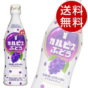 カルピス 巨峰 希釈ボトル (470ml×12本入)【送料無料】
