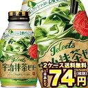 [在庫処分]ポッカサッポロ JELEETS 宇治抹茶ゼリー 265gボトル缶×48本[24本×2箱][賞味期限:2020年3月3日]北…