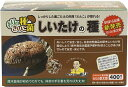 しいたけ種駒 もりの金太郎 しいたけの種【400個】| シイタケ種駒 椎茸種駒 しいたけ菌 椎茸菌 しいたけ栽培 シイタケ…