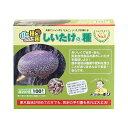 しいたけ種駒 しいたけの種【100個】| シイタケ種駒 椎茸種駒 しいたけ菌 椎茸菌 しいたけ栽培 シイタケ栽培 椎茸栽培…