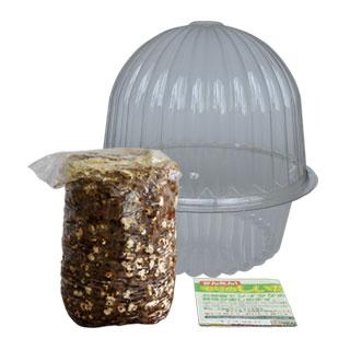 しいたけ農園栽培容器付の付属品