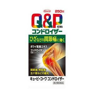 【第2類医薬品】《興和》 キューピーコーワ コンドロイザー 250錠