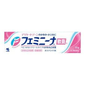 【第2類医薬品】《小林製薬》 フェミニーナ軟膏S 30g (鎮痒消炎剤)(かゆみ止め薬)