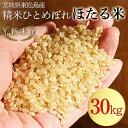 Hotarumai-gen-30kg-2