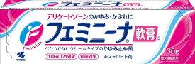 【メール便可】【第2類医薬品】小林製薬 フェミニーナ軟膏S(30g)【4987072007921】