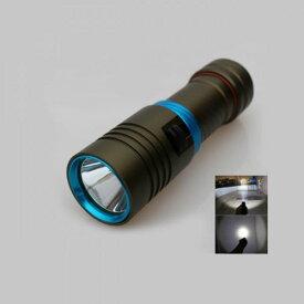 CREE XML-L2 ダイビングライト LED懐中電灯 100M水中 2500ルーメン TrustFire 保護回路付き18650リチウムイオン電池(3400mAh) * 1+USB型 1本用充電器付き