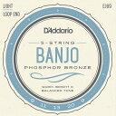 【DT】D'Addario EJ69 5-string Banjo Light 009-020 ダダリオ フォスファーブロンズ バンジョー弦