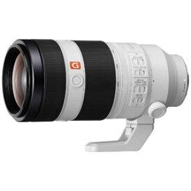 SONY(ソニー) カメラレンズ FE 100-400mm F4.5-5.6 GM OSS【ソニーEマウント】 SEL100400GM