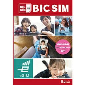 IIJ 【無料Wi-Fi付】BIC SIM ギガプラン eSIMパッケージ IMB332