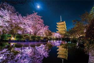 KAGAYA 月夜に咲く(京都) ジグソーパズル 風景 1000ピース 50x75cm 10-1299