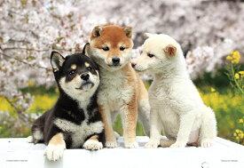 なかよしフレンズ 柴犬 ジグソーパズル ペット 動物 300ピース 26×38cm 03-883 やのまん