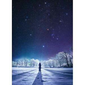 KAGAYA 冬のダイヤモンド ジグソーパズル 日本の風景 星空 500ピース 38×53cm