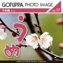 Pra gphoto017
